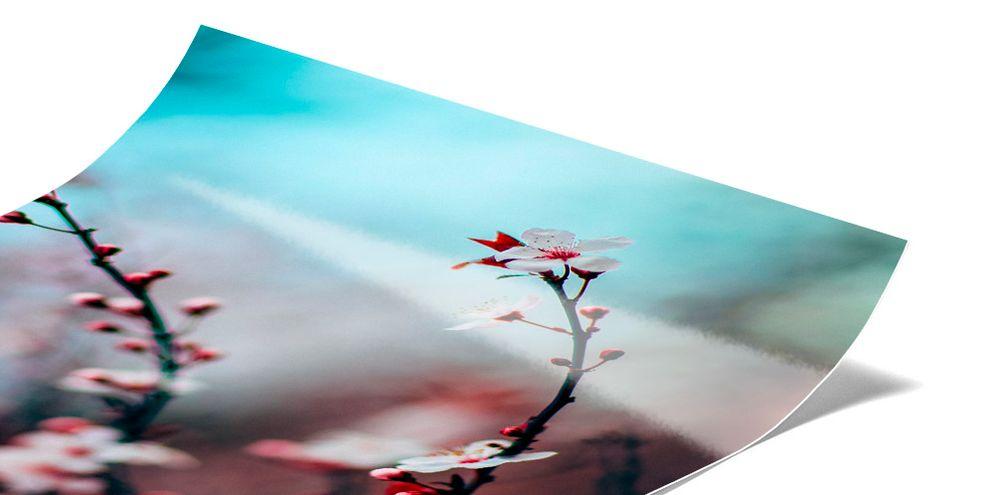 Echtes Fotopapier - Kaschierung hinter Acryl
