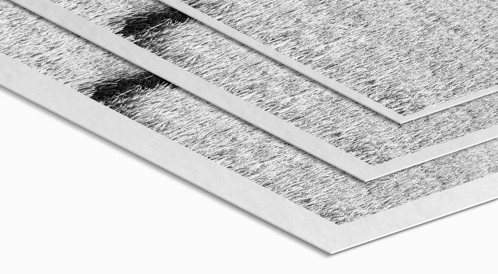 Weißrand - Ilford Mono Silk Schwarz-Weiß Fine Art Print