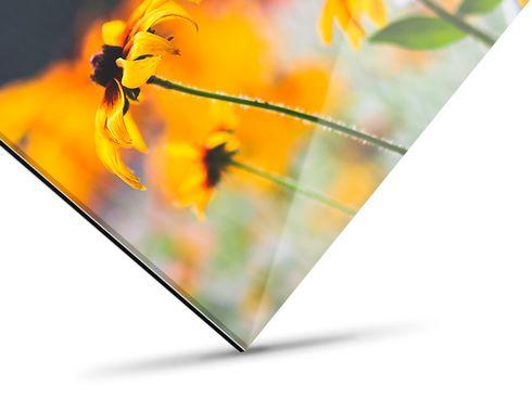 Galerie Print kaschiert hinter Acrylglas