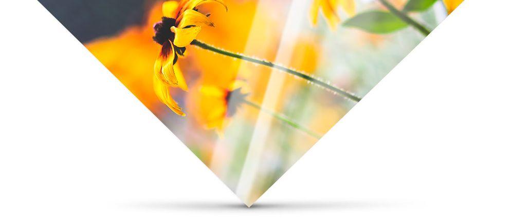 Hochwertiges Plexiglas - Acrylglasfoto Oberfläche
