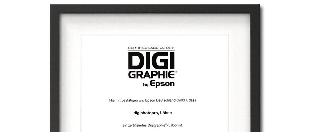 Epson Digigraphie
